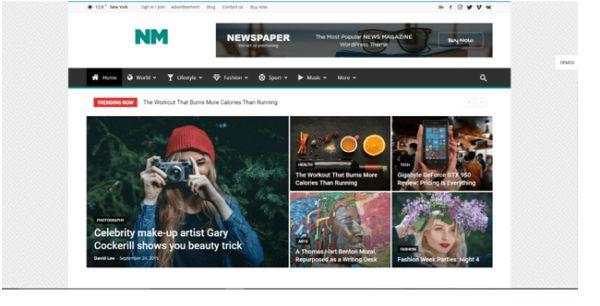 Amplitud de temas para revistas en Wordpress